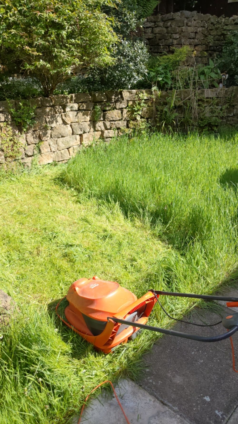 A lawnmower sitting on a portion of the freshly mown lawn, showing a very stark contrast between the freshly mown grass, and the very tall grass that has not yet been mown