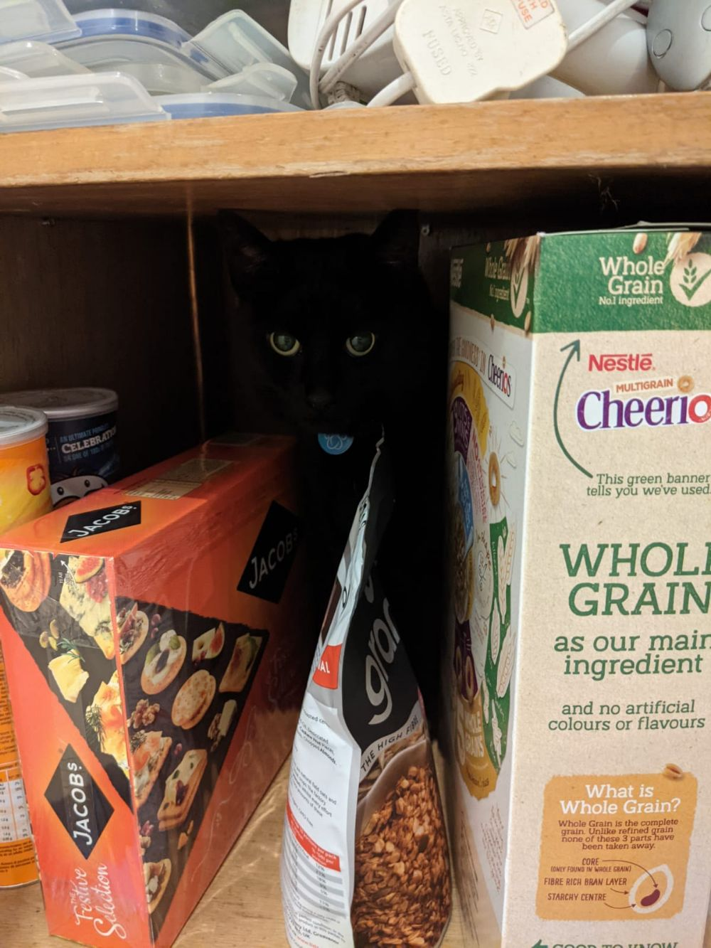Black cat peering out from a cupboard, behind various types of cereal and biscuits, little eyes glinting in the darkness